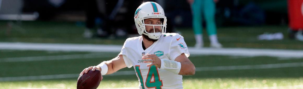 Miami Dolphins QB Ryan Fitzpatrick