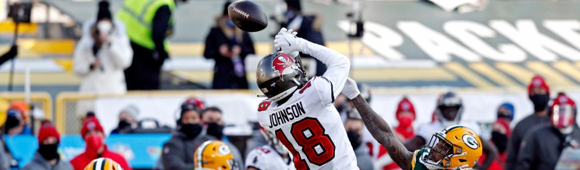 Tampa Bay Buccaneers WR Tyler Johnson