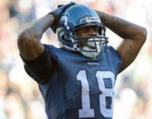 Sidney Rice: What Could Have Been?