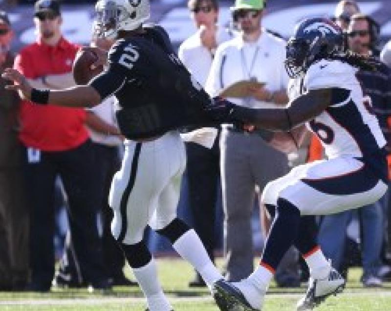 2013 Quarterbacks: True Sack Rate