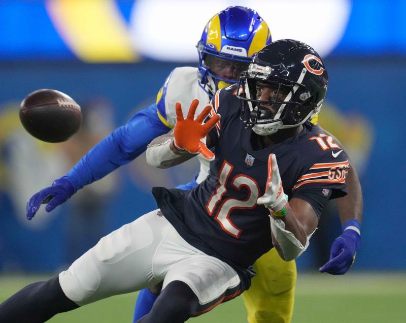 Chicago Bears WR Allen Robinson